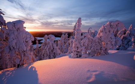 Обои пейзажи, фото, природа, зима