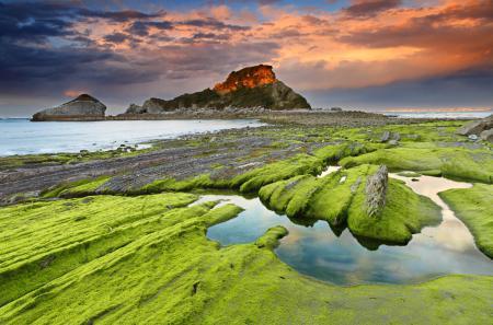 Фотографии море, камни, водоросли, скалы