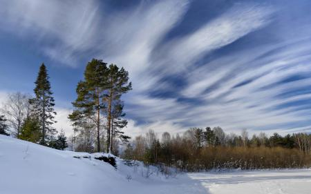 Фото зима, снег, деревья, небо