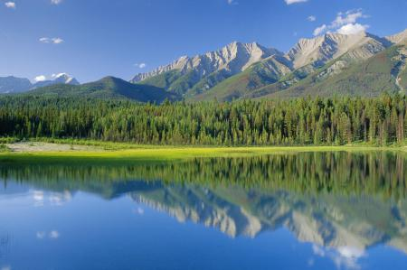 Фото Канада, национальный парк, горы, лес
