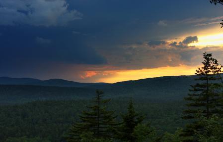 Фото пейзаж, лес, природа, небо