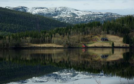 Картинки Природа, озеро, лес, домики