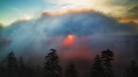 Фото рассвет, ели, тучи, небо