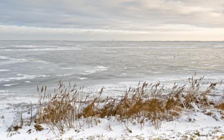 Заставки зима, река, лёд, камыш