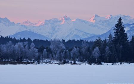 Фотографии зима, горы, деревья, пейзаж