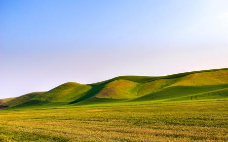 Фото поле, холмы, трава, природа