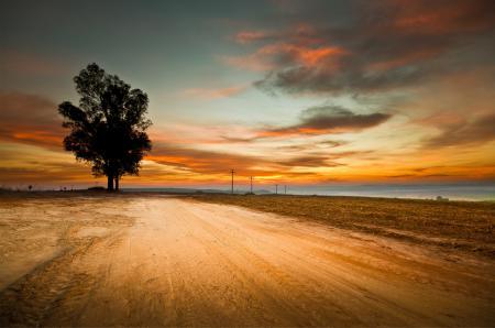 Фото небо, дерево, дорога