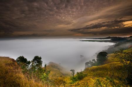 Фото небо, туман, деревья, холмы