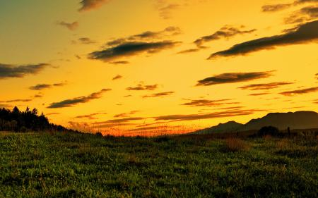 Обои пейзажи, небо, природа, трава