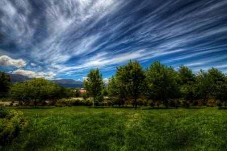 Фотографии небо, облака, трава, деревья