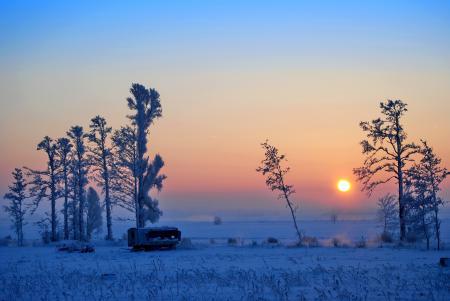 Обои поле, зима, закат, небо