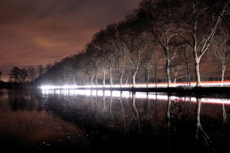 Заставки ночь, деревья, пейзаж