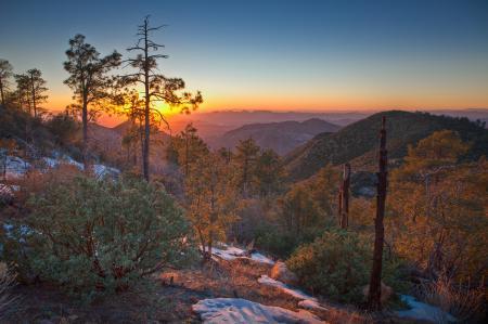 Фотографии лес, горы, закат