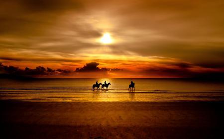 Заставки море, кони, закат, всадники