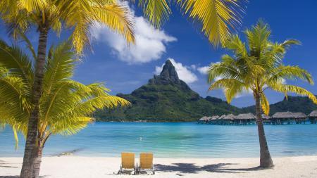 Картинки пальмы, гора, пляж
