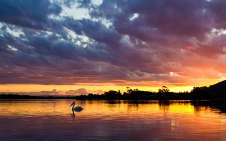 Фото пейзаж, природа, закат, солнце