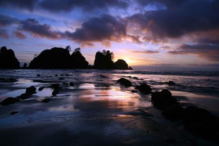 Фотографии парк, океан, скала, деревья