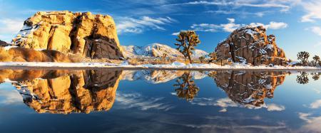 Фотографии joshua tree national park, пейзажи, природа, америка
