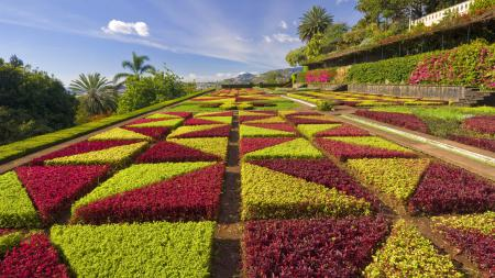 Фотографии Formal gardens, Madeira, Portugal