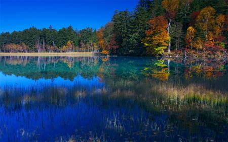 Заставки Япония, осень, озеро, лес