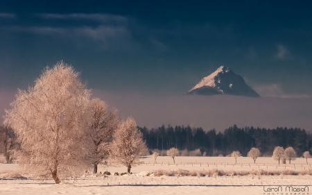 Заставки гора, зима, лес, иней