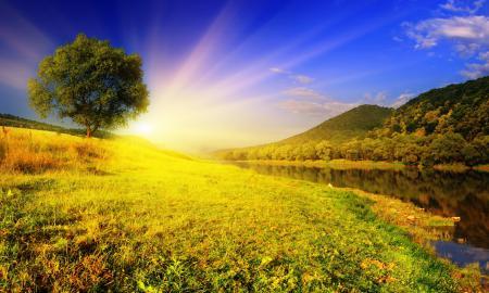 Заставки рассвет, солнце, лучи, дерево