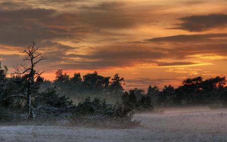 Фото туман, вечер, пейзаж, природа