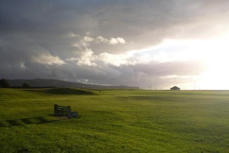 Обои поле, трава, небо, пейзаж