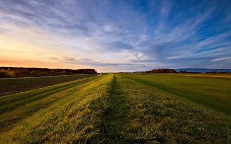 Фото поле, травка, вечер, небо