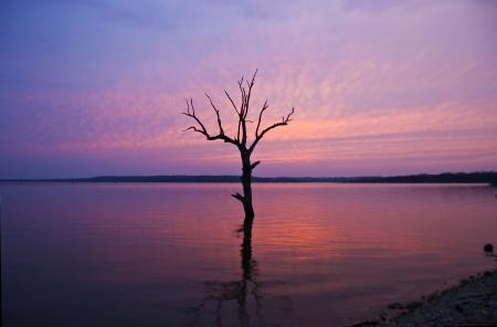 Заставки озеро, закат, небо, дерево