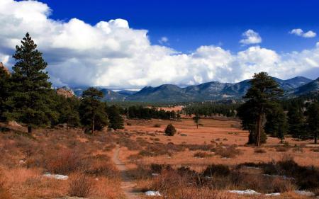 Фотографии долина, деревья, трава, холмы