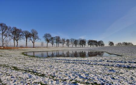 Фото снег, деревья, небо, природа