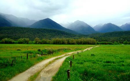 Фото дорога, горы, трава, зелень