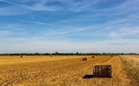 Картинки поле, сено, лето, пейзаж