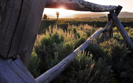 Фотографии забор, поле, свет