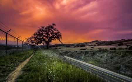 Фотографии дорога, забор, закат, пейзаж