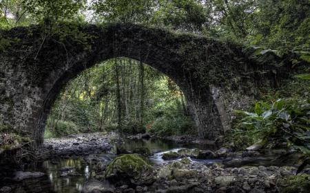 Фотографии река, мост, природа, пейзаж