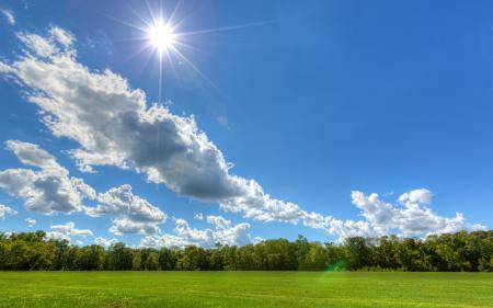Картинки поле, лето, природа, пейзаж