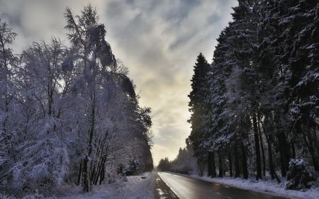 Картинки дорога, деревья, снег, пейзаж