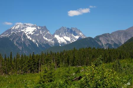 Обои Alaska, Аляска, горы, лес