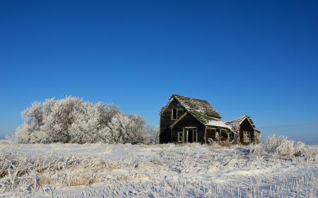 Картинки зима, поле, дом, пейзаж