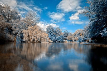 Фотографии деревья, зима, снег, вода