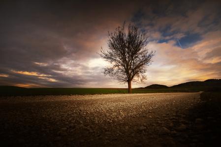 Фотографии небо, дерево, камни, дорога