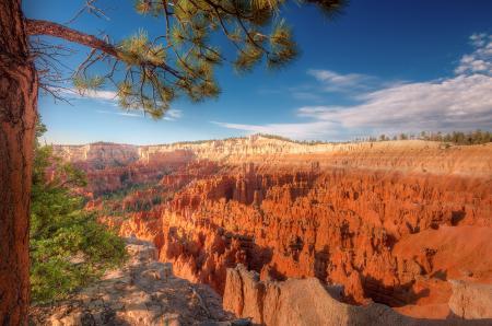 Картинки природа, брюс каньон, юта, веетка