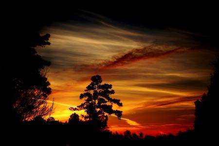 Фото закат, вечер, деревья, тёмные