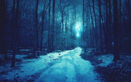 Фотографии дорога, зима, снег, деревья