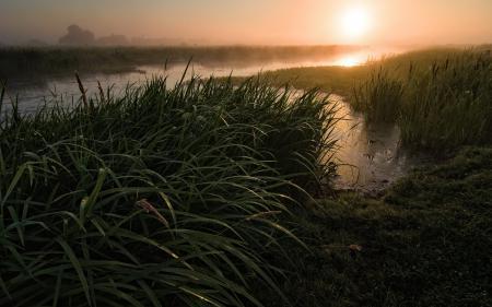 Фотографии закат, река, трава