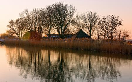 Фотографии осень, река, дома, камыш