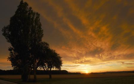 Фото закат, деревья, небо
