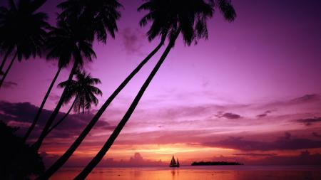 Заставки Тихий океан, остров, Таити, закат